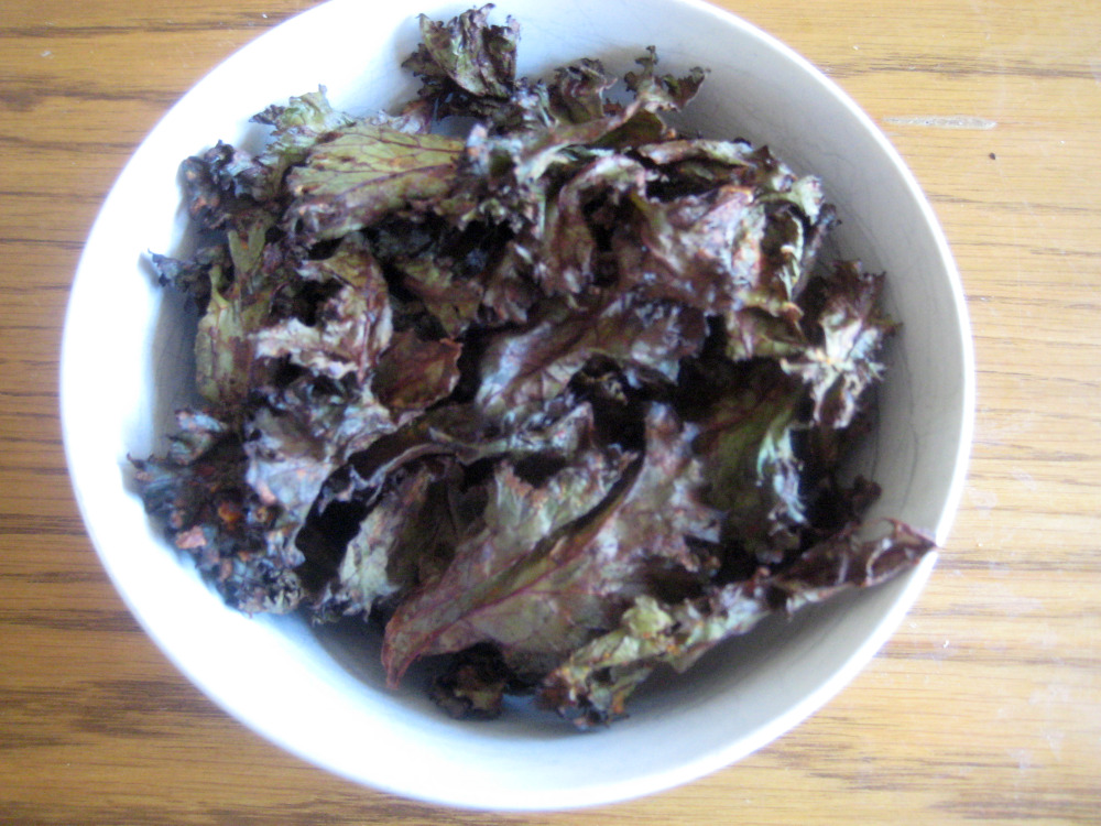 Spicy Kale Chips main wp pic